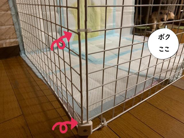 犬が失敗しないトイレ【100均材料でDIY】おススメの手作りトイレ8 トイプードルの空